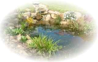 pond construction cleaning and maintenance hereford